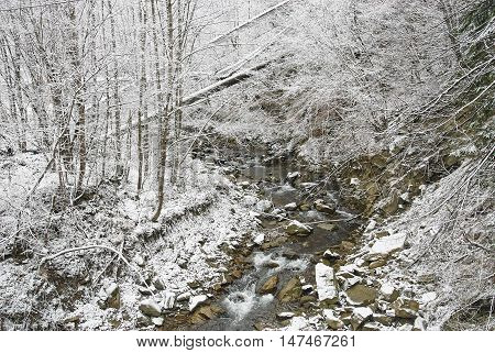 Mountain River In Winter Landscape