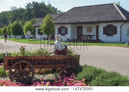 Ukrainian Cossack in a cart on the background of Ukrainian homes