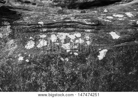 Grey stone covered by lichen. Natural textured Background. Grey rock with cracks and colorful spots of lichen.