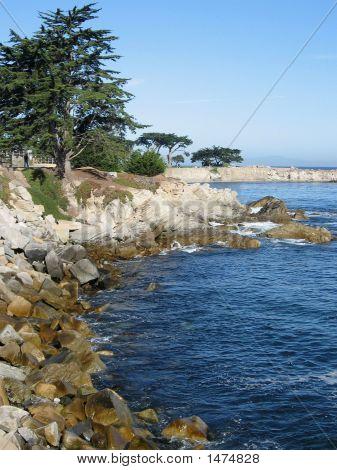 Monterey_Shore