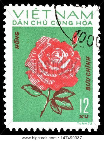 VIETNAM - CIRCA 1974 : Cancelled postage stamp printed by Vietnam, that shows Rose.