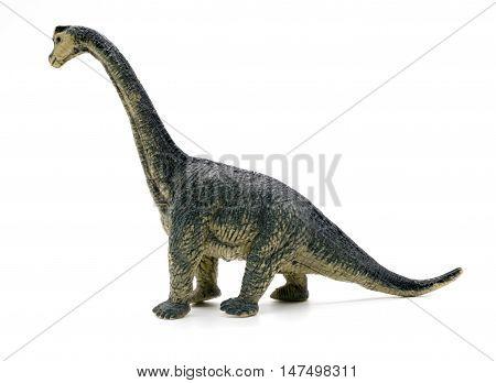 Brachiosaurus dinosaurs toy on white background, toy