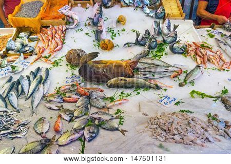 Seafood and fish at a market in Sicily