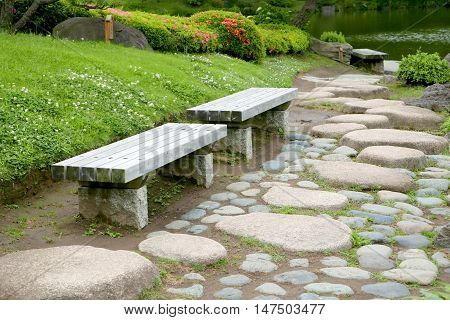 Two Benches, Green Plants, Flowers, Stone Road