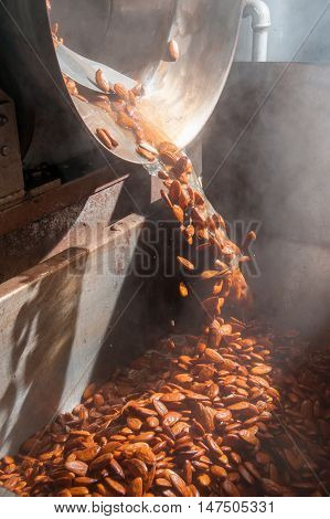 Shelled almonds just after the blanching process ready for the peeling phase