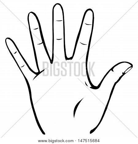 Vector Line Art Palmwith Fingers Spread