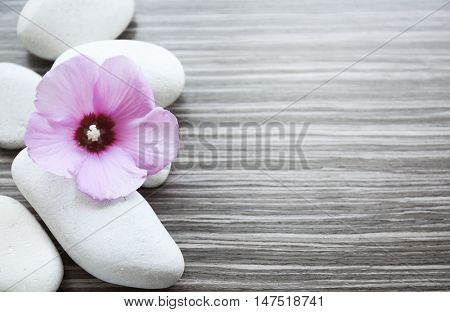 Spa stones with mallow on wooden background