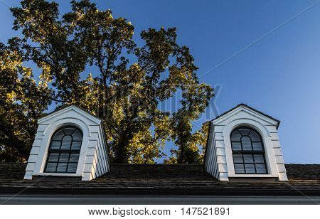 Dormers On A Black Shingle Roof. Double dormers on a black shingle roof with white siding and black trim.