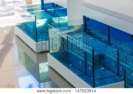 Agios Nikolaos, Greece - July 30, 2012: Aquariums For Feet Treatment With Rufa Garra Fishes