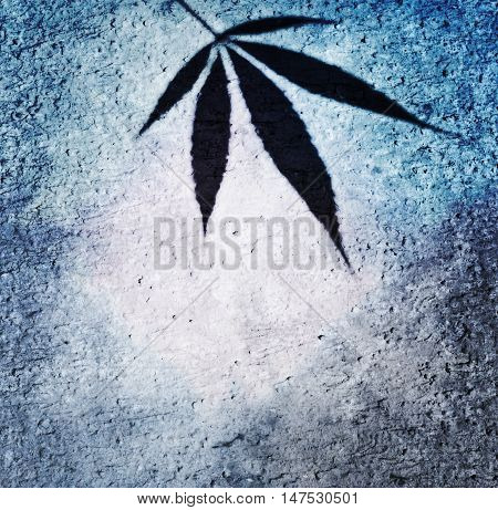 Blue frame with canabis leaf on cement wall background, can be used as background or label