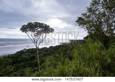 Southern Pacific Coast Of Costa Rica