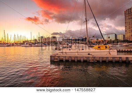Skyline at twilight of Ala Wai Harbor the largest yacht harbor of Hawaii. Honolulu Oahu in Hawaii United States.