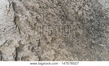Stone texture background. Miekinia porphyry make an edgy, yet earthy background for any project.