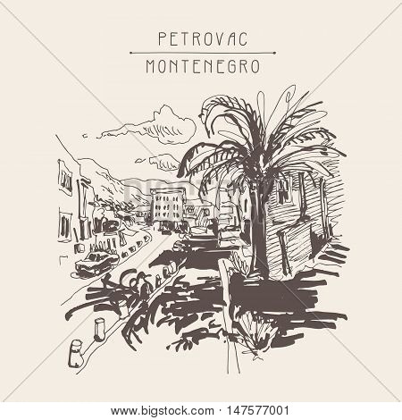 sepia sketch drawing of Petrovac Montenegro street with palm, vintage touristic postcard, travel postcard vector illustration
