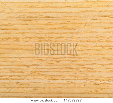 Modern floor from light bamboo texture. Bamboo wood Grain background