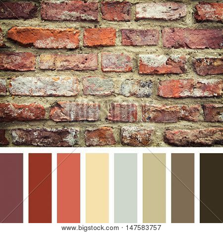 Old red brick wall, in a colour palette with complimentary colour swatches.
