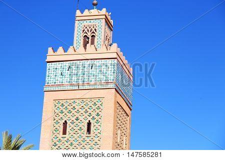 History  Maroc Africa  Minaret Palm
