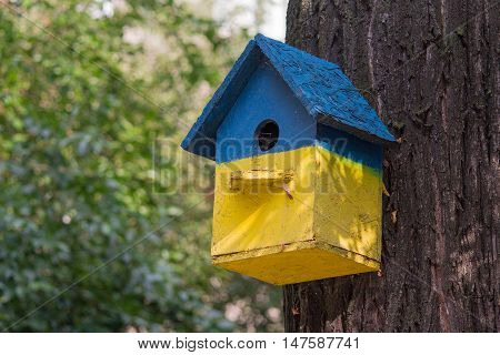 Birdhouse painted in bright colors hanging on a tree. Nature