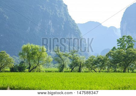 The beautiful karst mountains and rural scenery in spring, Guilin, China
