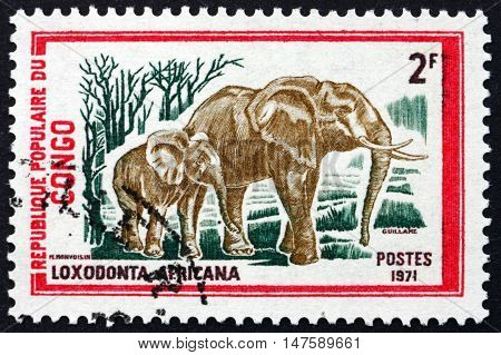 CONGO - CIRCA 1972: a stamp printed in Congo shows African Elephants Loxodonta Africana circa 1972
