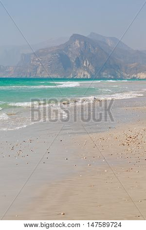 In Oman Coastline Of Salalah The Mountain And Sea Seagull Full