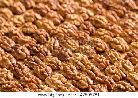 Background of symmetric walnut halves. Many walnuts