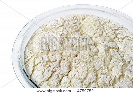 Yeast dough in a bowl closeup isolated on white
