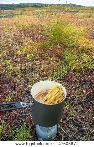 Cooking Among Tundra Plants At Iceland, Summer Time