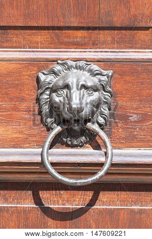 Old door knocker with lion head close up