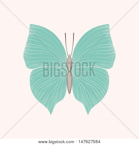beautiful vintage blue butterfly isolated on white background. Hand-drawn contour lines and strokes.