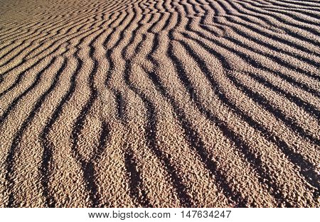 USA, New Mexico, White Sands National Park, rippled sand dune