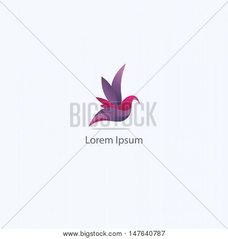 Colorful Bird logo, dove flying vector, pigeon illustration