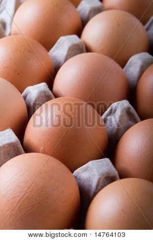 eggs closeup