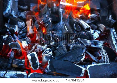burning black coal for frying Fire carbon charcoal
