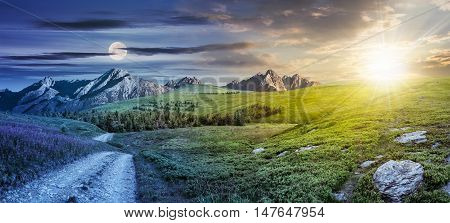 twenty four hour concept. composite summer landscape with high wild grass and purple flowers near the road to forest on mountain hillside and rocky peaks in the distance