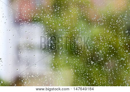 raindrops on a window pane with green background
