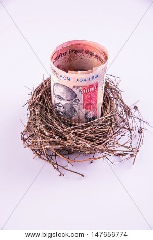 Original bird's nest with indian paper currency notes. New business starting by banknotes. Business concept.