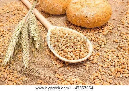 diet supplements wheat grain on canvas .