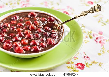 chocolate and cherry mousse in a green plate.