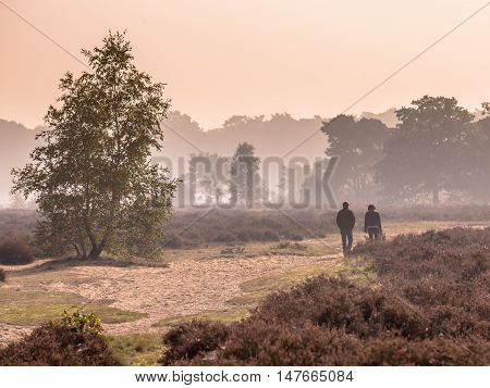 Couple Strolling Along Path Through Heathland
