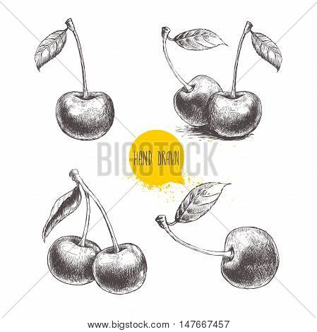 Hand drawn cherry set isolated on white background. Retro sketch style vector eco food illustration