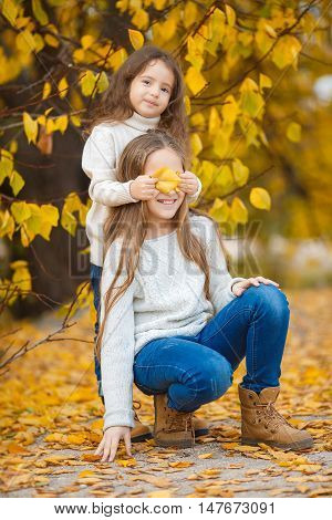 Two sisters,girls Oriental appearance,long blond hair,both dressed in light sweaters,blue jeans and brown shoes,spend time in the beautiful yellow autumn Park together,playing and having fun in the alley strewn with yellow leaves