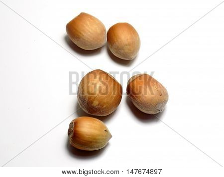 Isolated hazelnuts on white background, healthy nut food in nutshell
