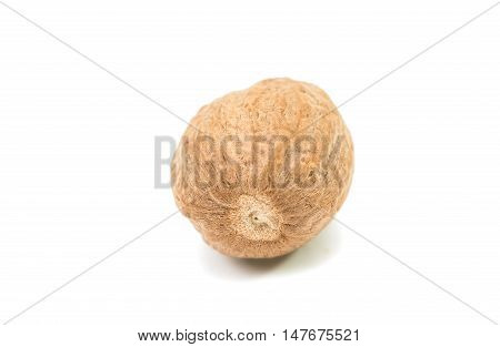 brown nutmeg spice on a white background
