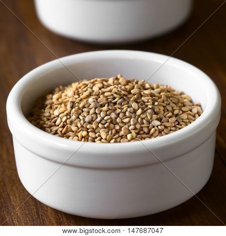 Roasted sesame seeds in small bowl photographed with natural light (Selective Focus Focus one third into the seeds)