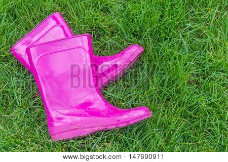 bright pink rubber boots/gardening/boots