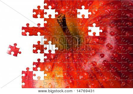 Puzzle Red apple with water drops close up