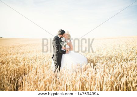 Beautiful couple in field, Lovers or newlywed posing with perfect blue sky.