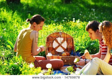 Friends on picnic at sunny day