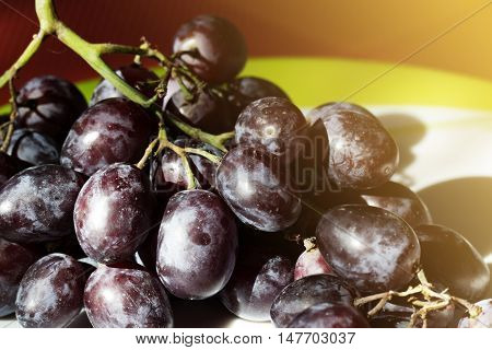 Bunch of black grapes on a plate. Bunch of black grapes on a white plate